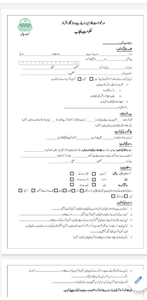 fake form for insaf imdad application form.
