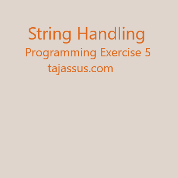 String Handling Programming Exercise 5 in C/C++