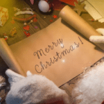 Merry Christmas Whatsapp status video Download 2020 | Wishes and Greetings 30second