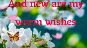 2021 Happy New Year wishes Whatsapp Status Video Download