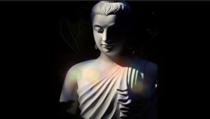 Buddha Purnima Whatsapp Status Download
