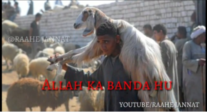Bakra Eid Mubarak Status Video 2021