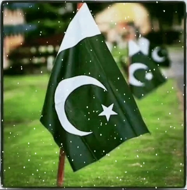 Pakistan independence day 14th August whatsapp status Download