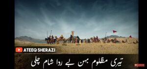 10 Muharram status/sham e Ghareeban status download